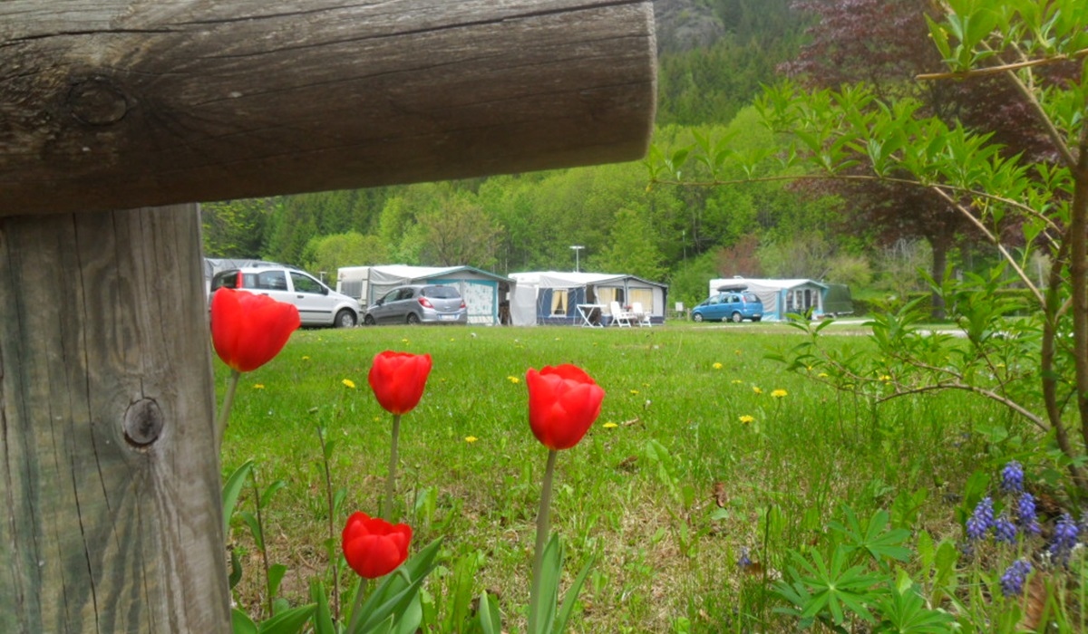 Camping Valle Verde